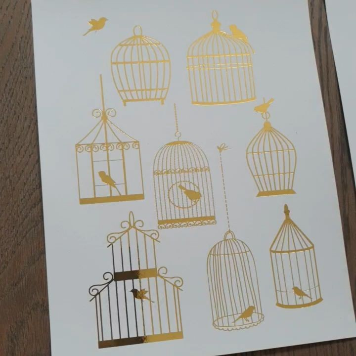Types of Birdcage(s) . . #bird …
