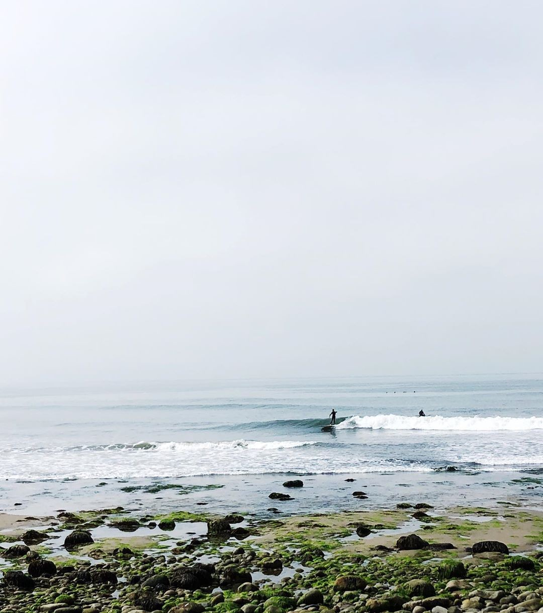 Single fin mornings …