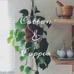 Profile picture of Cotton and Copper